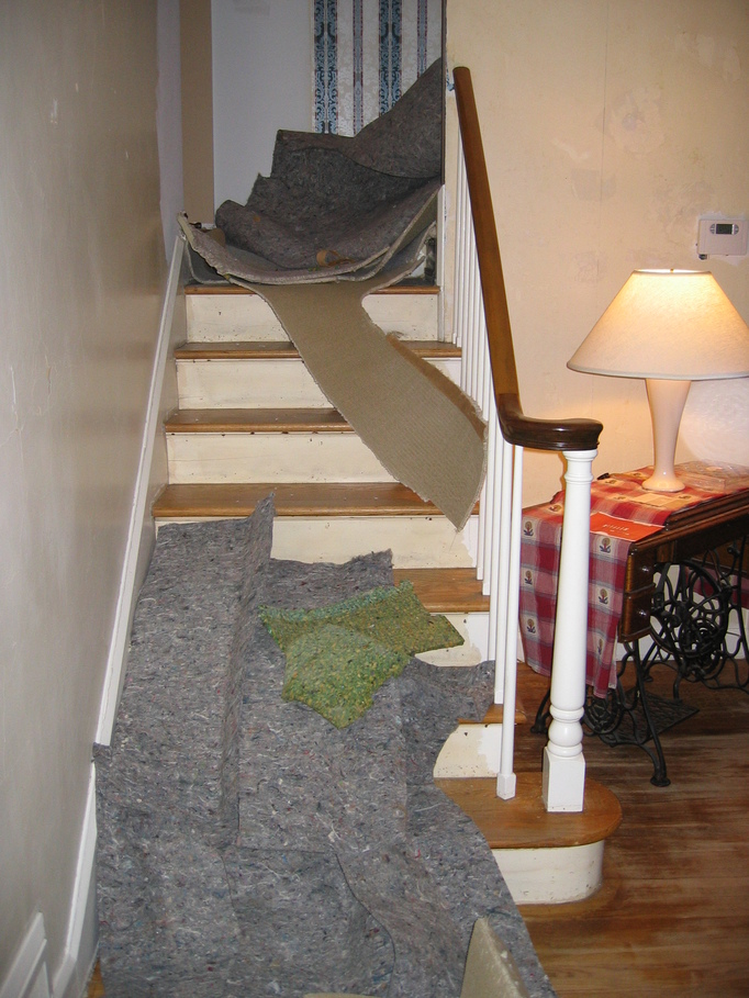 Here S One Cat Who Won T Be Too Hy With This Change As She Loved To Lie On The Stairs And Scratch Carpet Covering Risers